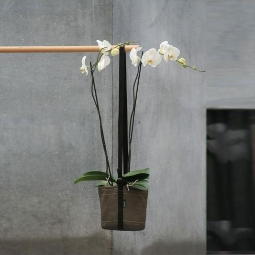 Hanging Pot, 3L, Bacsac