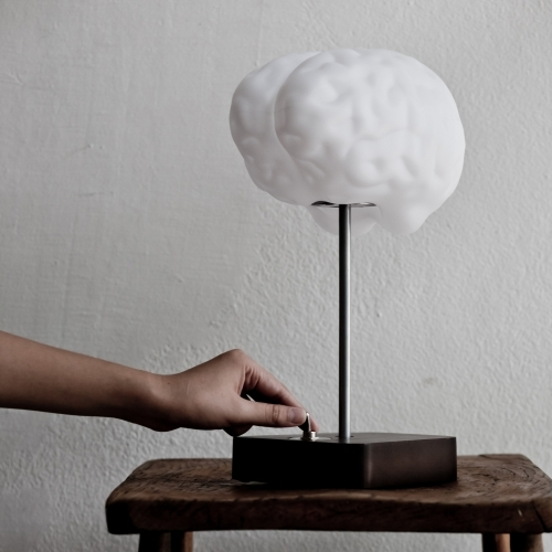 Brain Lamp, Propaganda