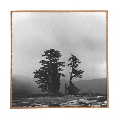 leah flores pacific northwest Framed