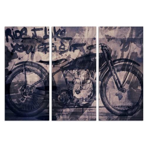Ride it Triptych   Canvas Art