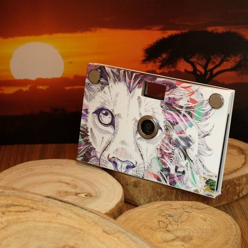 Paper Camera | Lion