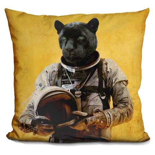 Durro Art 'Space Jag' Throw Pillow